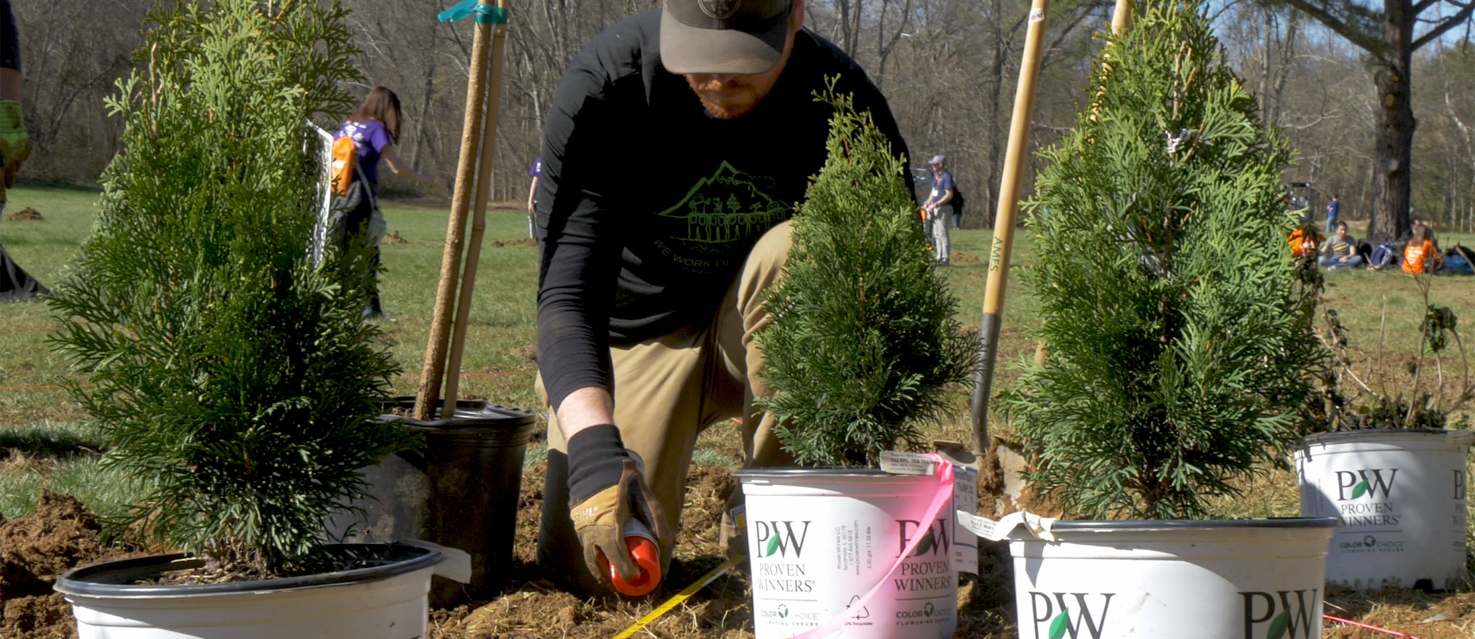 Student planting Proven Winners arborvitae at sponsored event