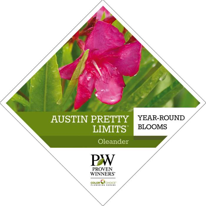 Austin Pretty Limits™ Nerium tag
